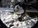 Snow fun: Clogged drivetrain