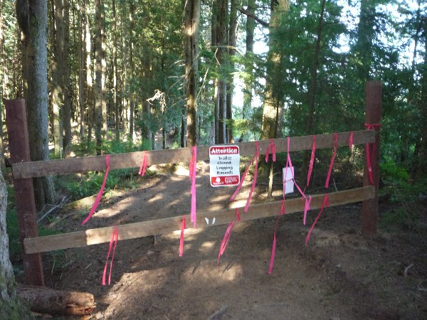 The solution: Open Tiger Mountain Trail (TMT)!